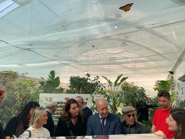 casa farfalle marsala 05